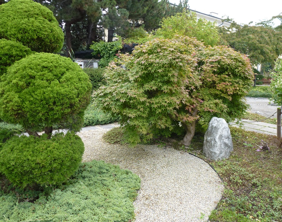 Kagran school garden (11)