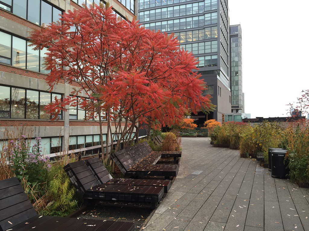 Highline New york (2)