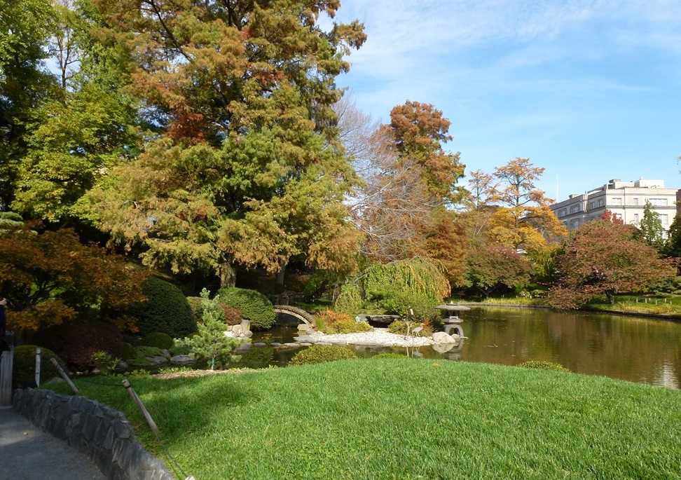 brooklyn Botanical Garden (3)