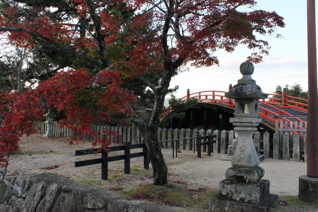 Miyajima island (6)
