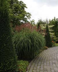 Trädgårdsform-liten