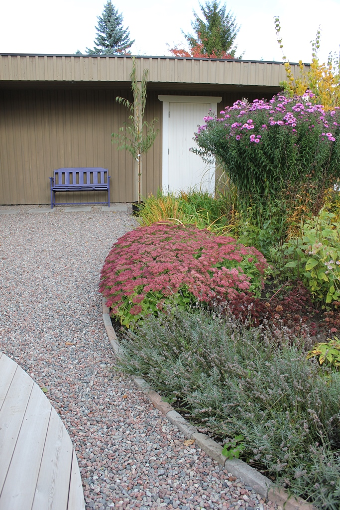 Trädgårdsforms trädgårdsplanering bilder (15)