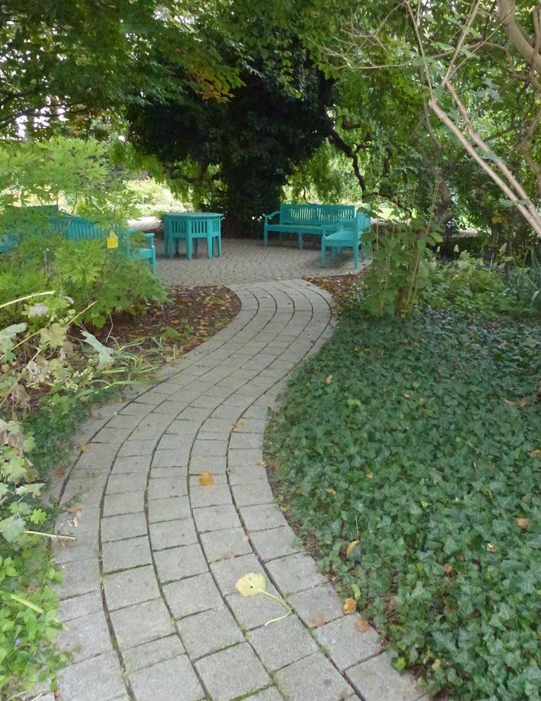 Kagran school garden (10)