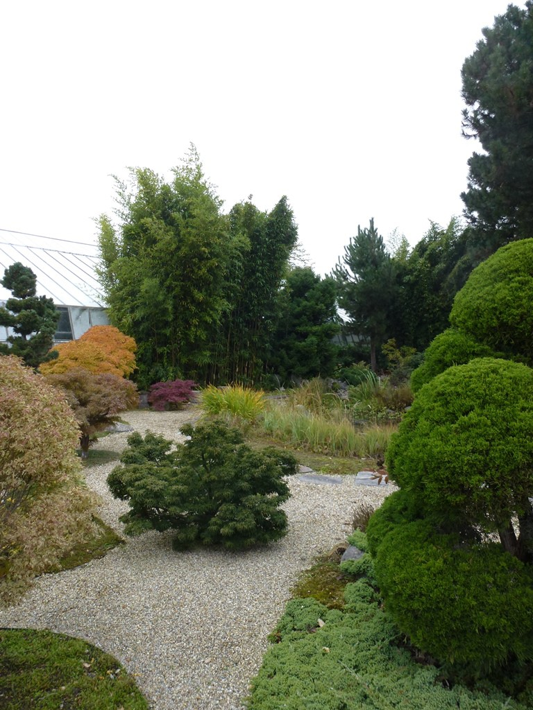 Kagran school garden (13)