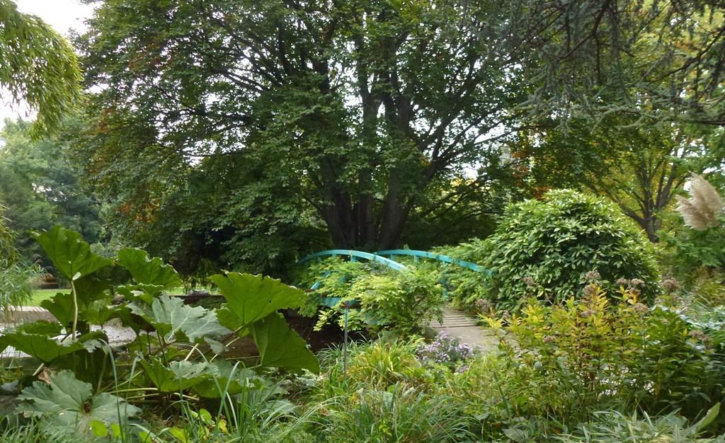 Kagran school garden (16)