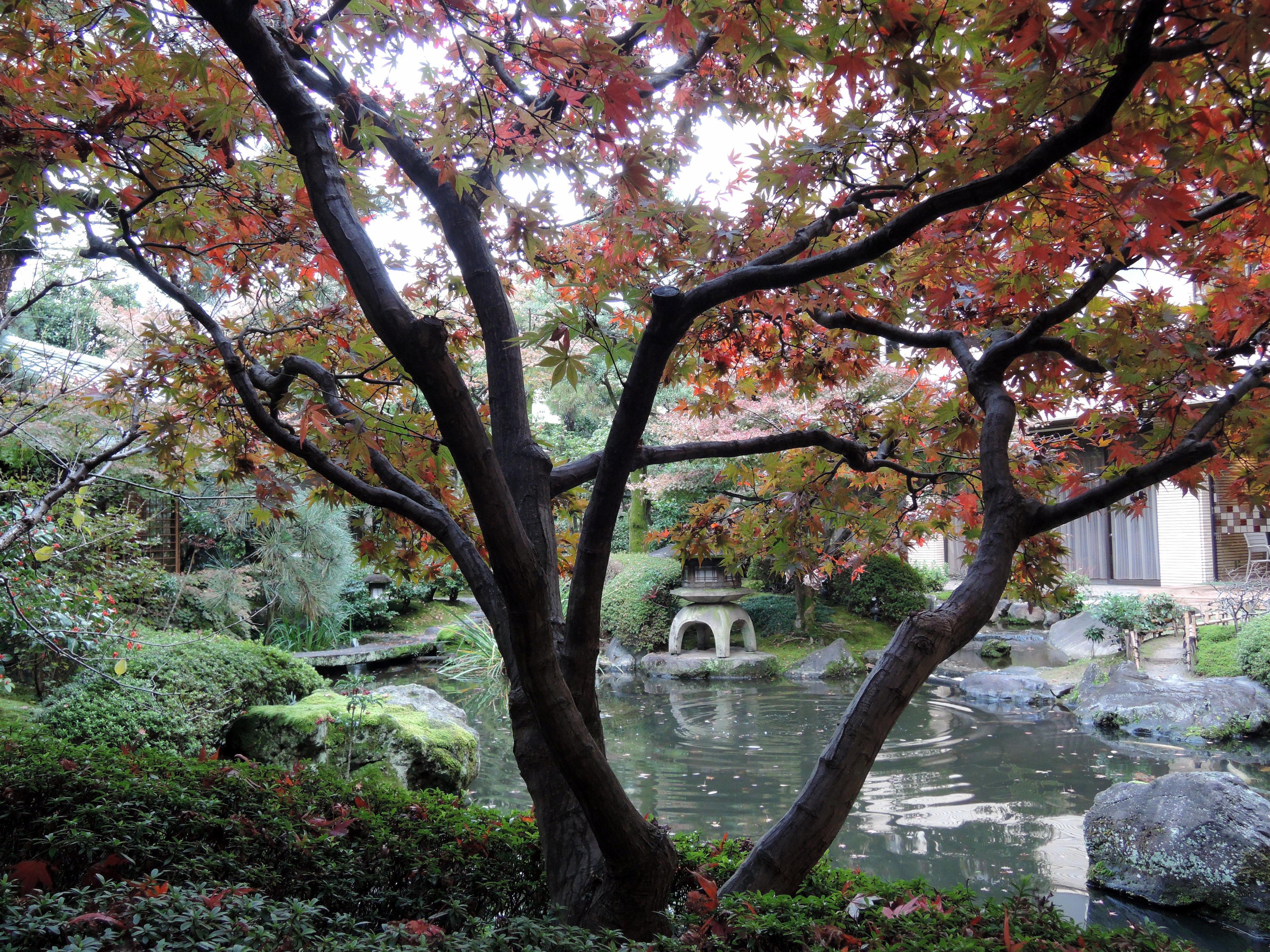 Trädgården vid hotellet Heian i Kyoto