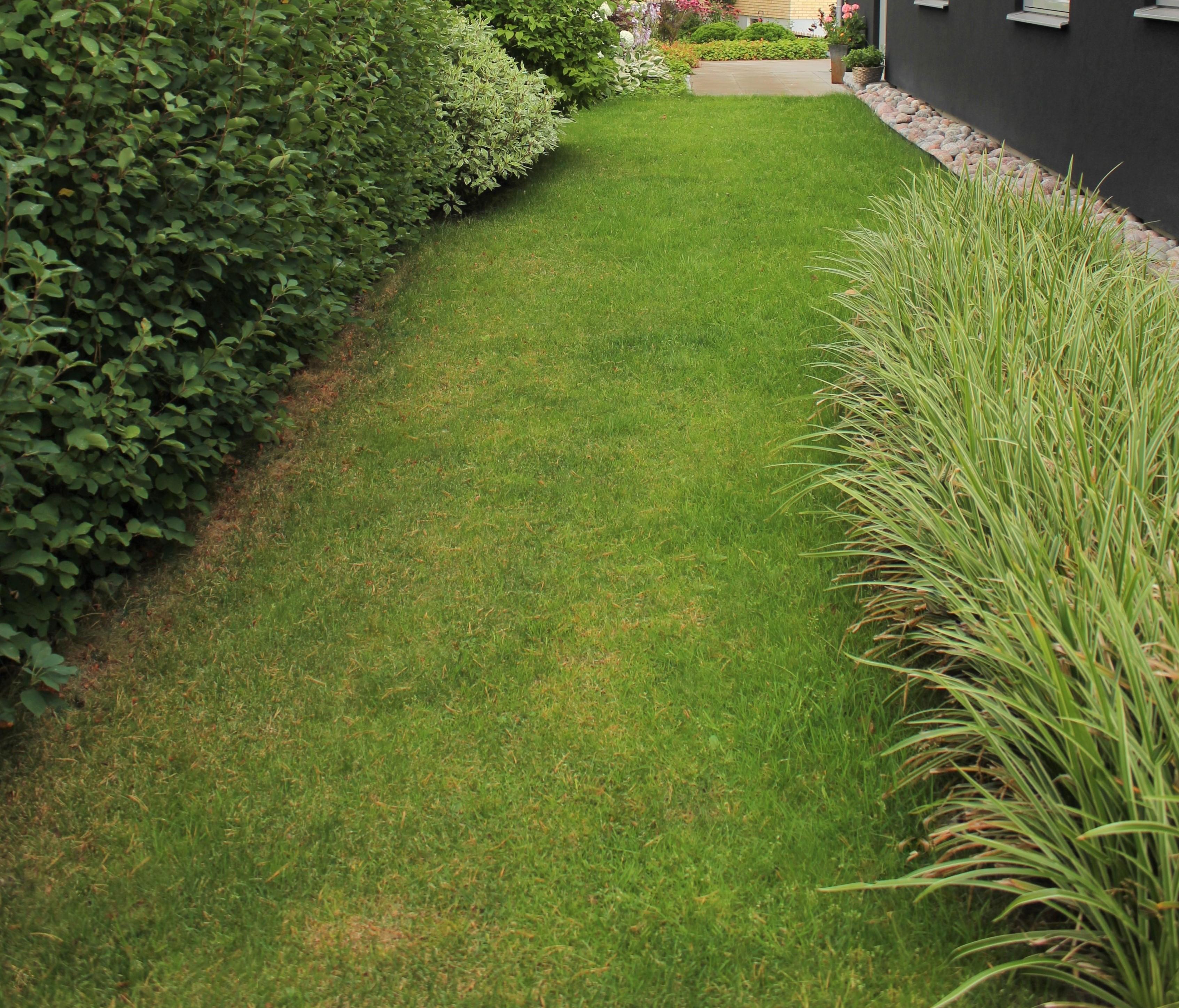 trädgårdsdesign av trädgårdsform (5)