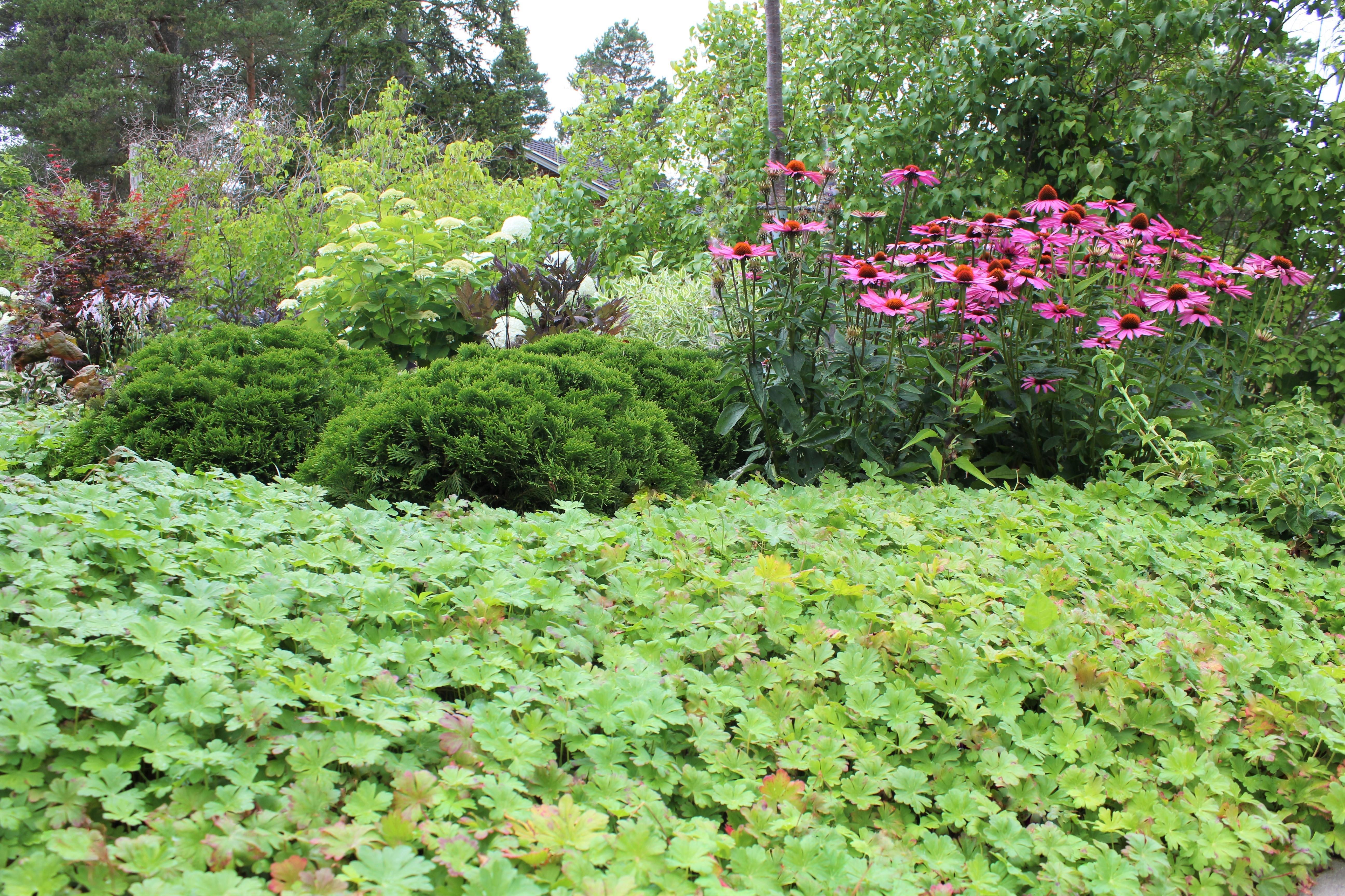 trädgårdsdesign av trädgårdsform (9)